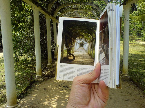 Encadré (Jardim Botânico, Rio de Janeiro) by Frederic della Faille, on Flickr